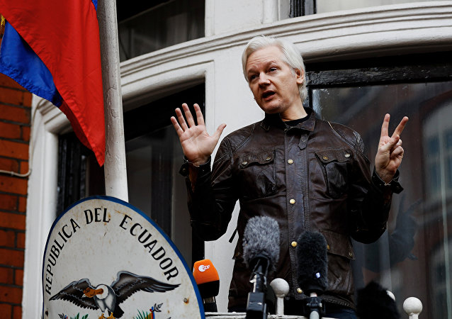 WikiLeaks founder Julian Assange is seen on the balcony of the Ecuadorian Embassy in London, Britain, May 19, 2017