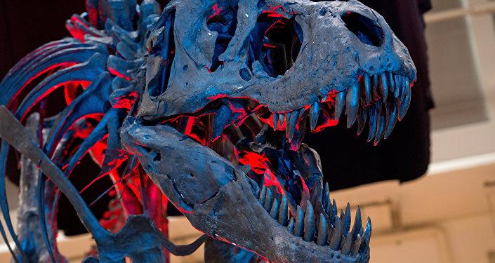 Esqueleto de Tiranossauro em museu da Alemanha