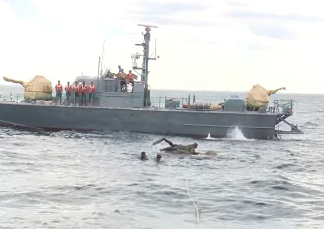 Militares resgatam elefante no mar (Arquivo)