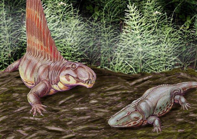 Dinossauros (ilustração)