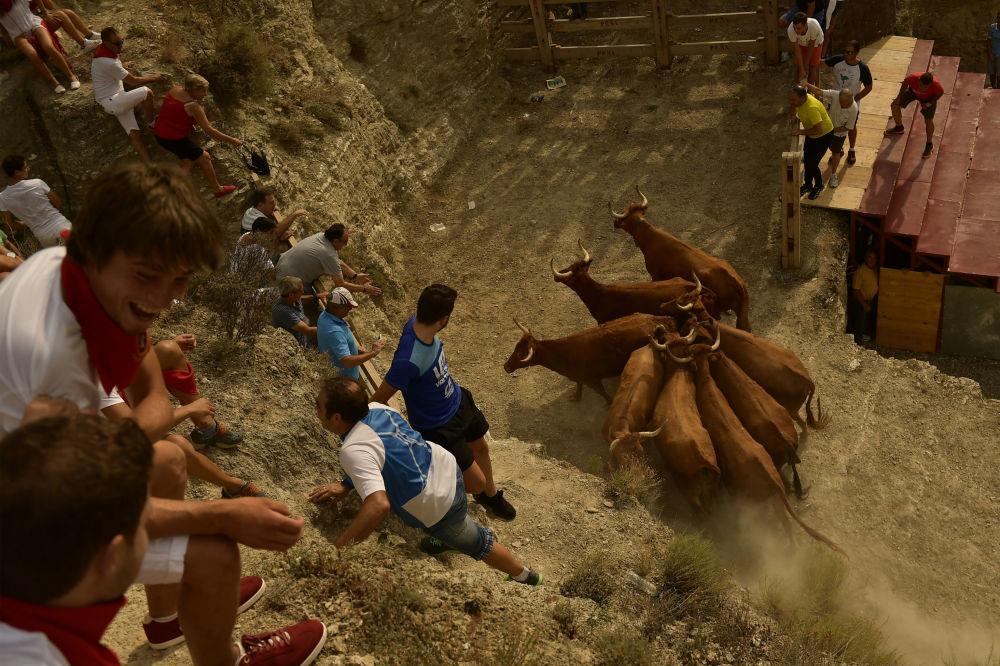 Habitantes de uma aldeia em Espanha durante as celebrações em homenagem ao patrono Santo Estevão