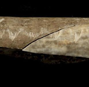 Osso de pessoa pré-histórica com marcas rituais