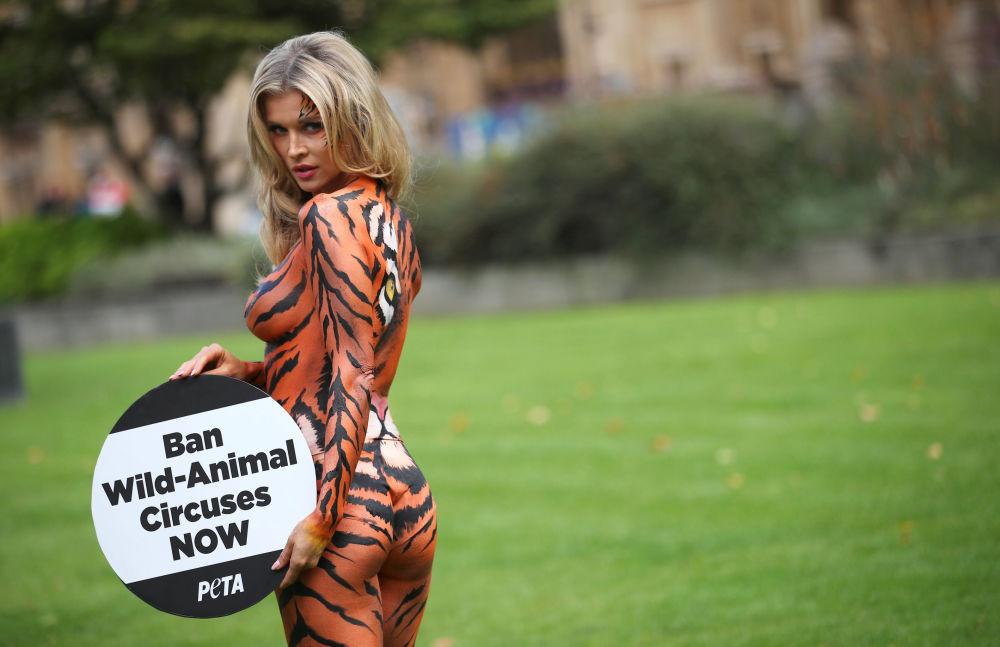 Modelo Joanna Krupa posa durante um protesto contra uso de animais na indústria de circos em frente ao parlamento britânico em Londres
