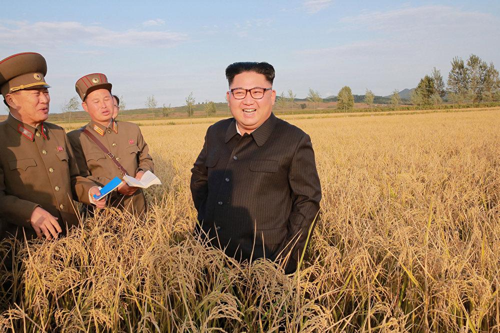As novas sementes com maior produtividade serão então utilizadas em outras fazendas, informou a mídia estatal da Coreia do Norte.