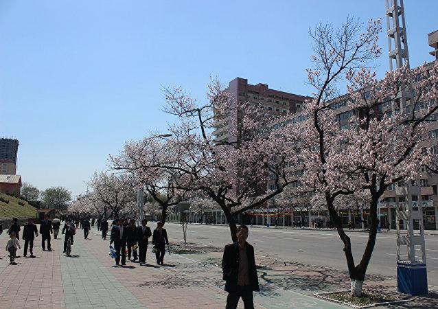 Pyongyang - capital da Coreia do Norte