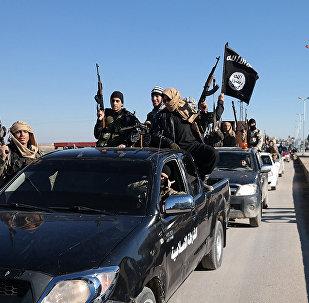 Terroristas do Daesh em comboio em Tel Abyad, nordeste da Síria (foto de arquivo)