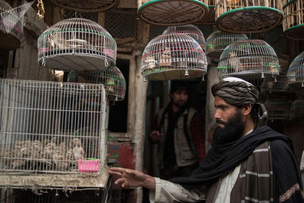 Mercado em Cabul, Afeganistão