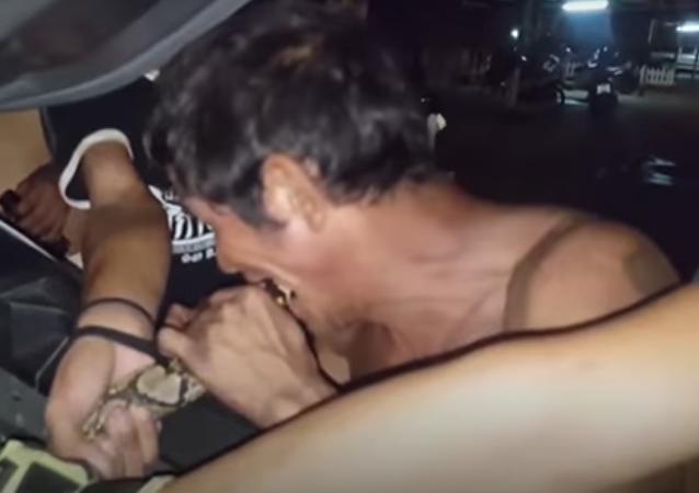 Homem dá 'mordida de salvação' a serpente