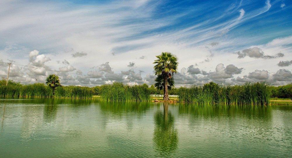 Natureza do México (imagem ilustrativa)