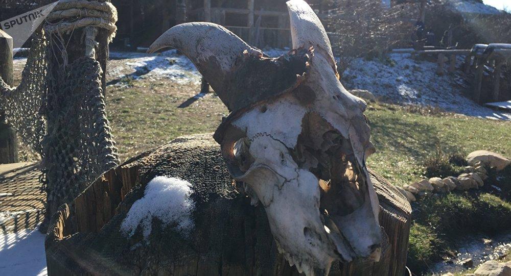 Um dos troféus dos vikings que decora o parque temático localizado no povoado de Perevalny, na Crimeia