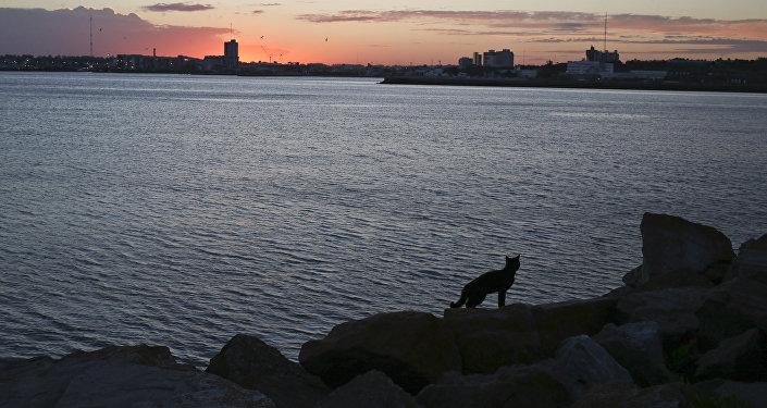 A base naval Mar del Plata após o desaparecimento do submarino argentino ARA San Juan